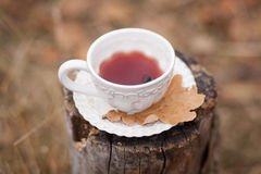 White vintage cup with mulled wine. And dry oak leave on stump on beige background outdoors Royalty Free Stock Photos