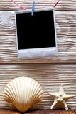 White vintage photo frame with empty space, shell and starfish on wooden background royalty free stock photography