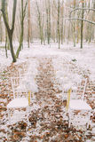 White vintage wedding chair in the autumn forest Stock Images