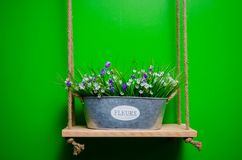 White and violet daisy flowers in metal iron bucket. royalty free stock photography