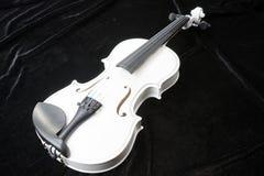 White violin  on black Stock Photography