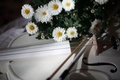 White violin and flowers. Photo white violin with a bouquet of white flowers royalty free stock photos