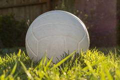 White Volleyball sitting in the grass on a sunny afternoon royalty free stock image