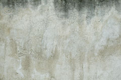 White wall Royalty Free Stock Photo
