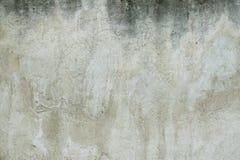 White wall royalty free stock photo