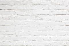 Free White Wall Background Royalty Free Stock Photos - 31929108