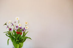 White wall and a floral decoration. The landscape of the white wall in the room and the floral decoration Royalty Free Stock Photo