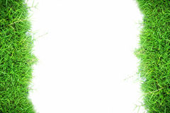 White wall and green grass background Royalty Free Stock Photos