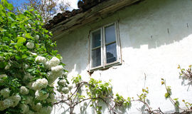 White wall of an old village house, Serbia Royalty Free Stock Photos