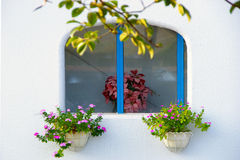 White wall and window with flowers Stock Photo