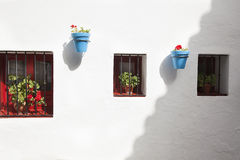 White wall with windows and flowers. Whitewashed white wall very rustic with texture and with 3 windows with bars and flowers of geraniums in blue pots hanging stock images