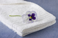 White Washcloth with Purple Petunia Royalty Free Stock Photo