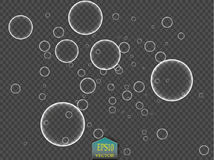White water bubbles with reflection set on transparent background vector illustration Stock Photos