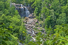 White Water Falls surrounded with greenery. Stock Images
