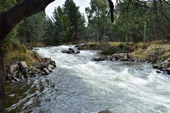 White Water. Hydro release water down a creek Stock Images