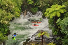 White water kayaking in Okere Falls, New Zealand. Kayakers brave the rushing cascades of Okere Falls on the Kaituna River, north of Rotorua, New Zealand. The stock photos
