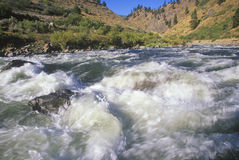 White Water, Payette River, Idaho Stock Images