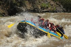 White Water Rafting. On the Rio Grande near Pilar, NM royalty free stock photography