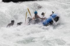 White water rafting on the rapids of river Yosino Stock Image