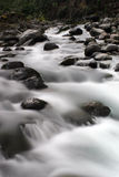 White Water Rapids Royalty Free Stock Photo