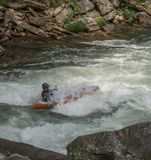 White Water Rifting. Kayaks and rafting a fun by dangerous sport. Paddle nature fun swift turbulence overturn Stock Photography