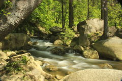 White water of the river Oker Stock Image