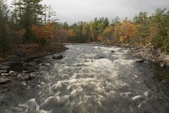 White Water Rushes Through the Penobscot River. During the autumn season Stock Photography