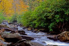 White water stream in the Smokies is surrounded with fall colors. Royalty Free Stock Image