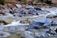 White water. Torrent in the Bavarian mountains Royalty Free Stock Photography