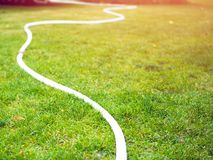 Watering hoses on a lawn. White watering hoses on a green lawn. Summer day. Sunny stock photos
