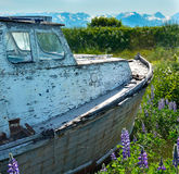 White weathered fishing boat floating on sea of green Royalty Free Stock Photos