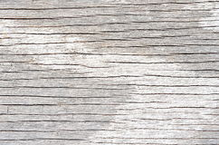 White weathered textured wood Royalty Free Stock Photography