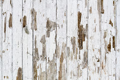 White weathered wooden background Stock Photos