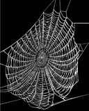 White web illustration. Illustration with spider web isolated on black background Royalty Free Stock Photos