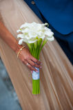 White wedding bouquet of calla in hands bride. White wedding bouquet of calla in hands of the bride Stock Image