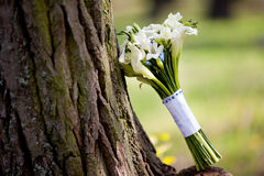 White wedding bouquet with callas Royalty Free Stock Images