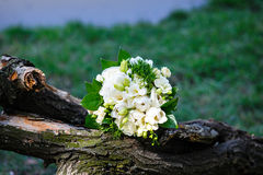 White wedding bouquet lying on a log.  Royalty Free Stock Images