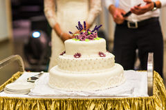 White wedding cake with pink and  flowers Stock Images
