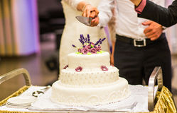 White wedding cake with pink and  flowers Royalty Free Stock Image