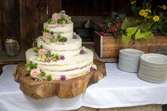 White Wedding Cake with pink Roses and Flowers on a cut Tree royalty free stock photography