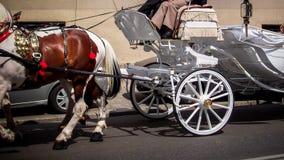 A white wedding carriage stock image