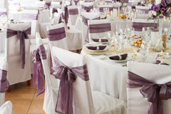 White wedding chairs with ribbon Stock Images