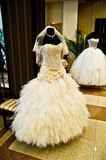 Elegant white wedding dress. Luxury wedding dresses in the room royalty free stock images