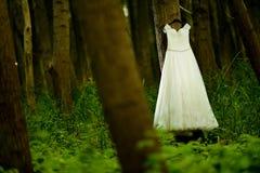 White Wedding Dress Stock Photography