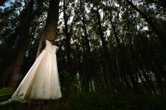 White Wedding Dress Stock Photos