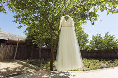 White Wedding dress hanging on a tree Stock Image