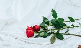 White wedding dress red rose Stock Photography