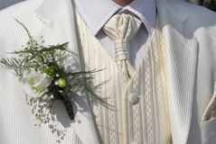 White wedding suit. White elegant wedding suit with posy Stock Images