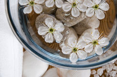 White wellness products Stock Photography