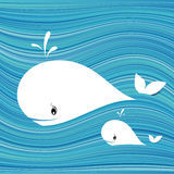 White whale Stock Photography